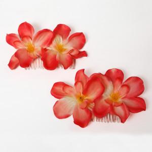 Peinecillos Orquideas Naranjas