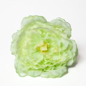 Rosa Polen Verde
